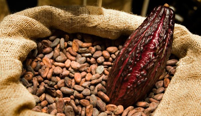 İşte kakaonun vücuda sır etkisi