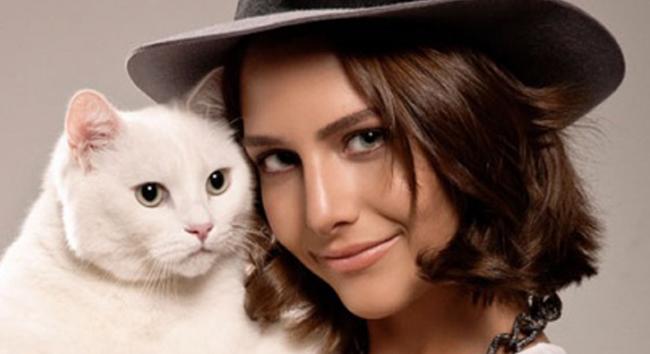 Kedilerin aşkı kadınlar