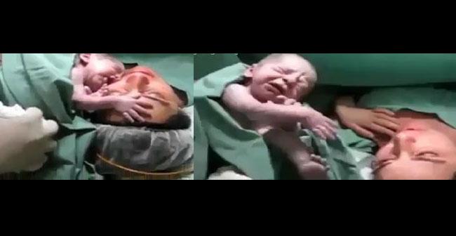 Yeni doğan bebek izleyenleri şaşırtıyor…