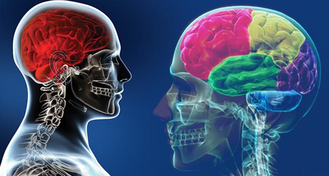 Sakın yemeyin! İşte beyni bitiren gıda